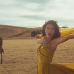 Swift's Latest Video Helps Animals